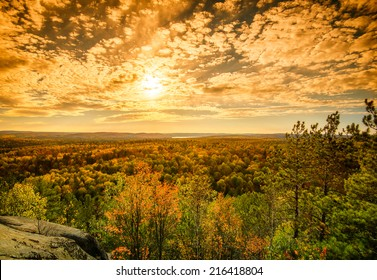 A high angle view of the colorful treetops of an autumn forest.  Sunlight is filtered by soft clouds in a blue sky.