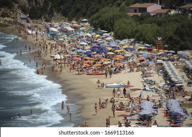 High angle view of crowded beach on the Bay of Biodola, Elba, Tuscany, Italy