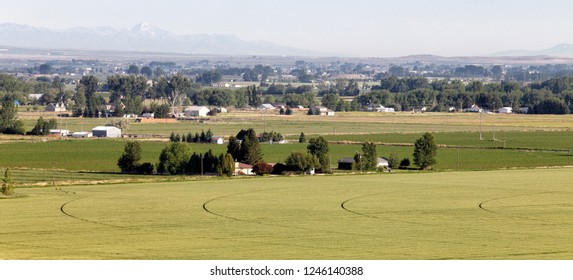 A high angle view of farm land planted in wheat, in the beautiful, fertile farm fields of Idaho.