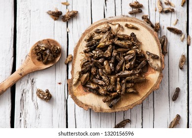 high angle view of a pile of fried crickets seasoned with onion and barbecue sauce, on a wooden tray, on a rustic white wooden table