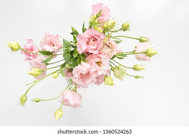 High angle view of pink lisianthus flowers and cream buds in vase on white background (selective focus)