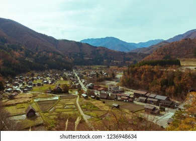 High angle view of the UNESCO World Heritage site in Shirakawa go with traditional Japanese Wada houses and their characteristic thick thatched roofs among yellow autumn leaves and paddy fields
