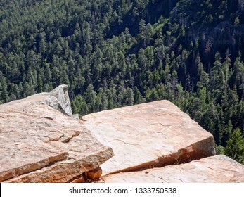 High cliff top against a pine forest background far below; Mogollon Rim in Apache-Sitgreaves National Forest in Arizona