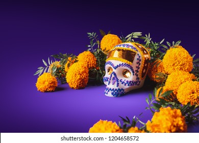 "High contrast image of a sugar skull used for ""dia de los muertos"" celebration in a purple background with cempasuchil flowers"