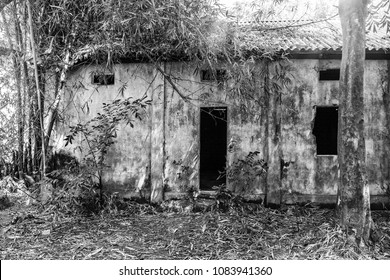 A high contrast monochrome filtered view of an abandoned and derelict village school building with weathered walls and tin roof standing amid overgrown rainforest vegetation in an Asian village.