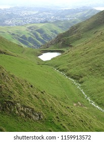 High country stream running down to small lake in Belmont Regional Park New Zealand with Porirua in distance,