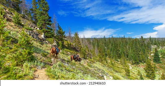 High country trail in the Never Summer wilderness area