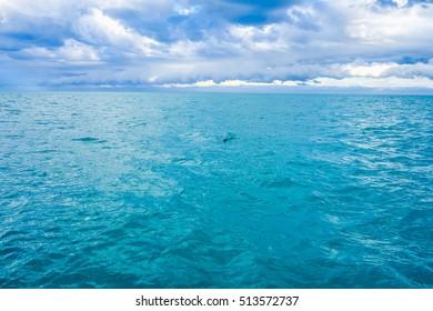High dynamic range (HDR) View of the sea in Akaroa, New Zealand