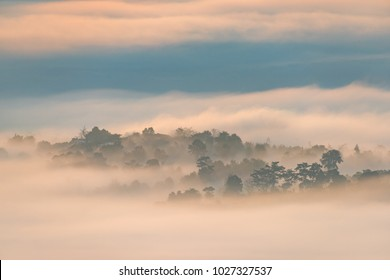High hill and the mist in early morning sunrise