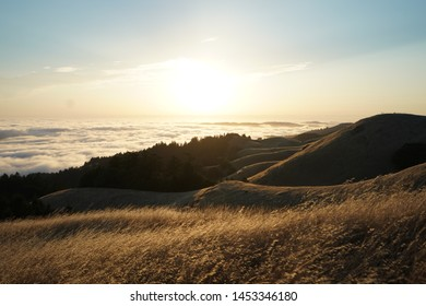 A high hills covered in dry grass on a sunny day with a visible skyline on Mt. Tam in Marin, CA