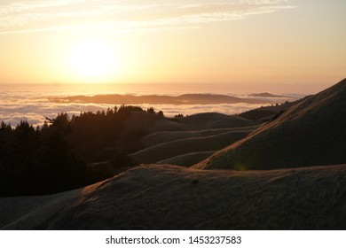 A high hills with forest in the background and a visible skyline at sunset on Mt. Tam in Marin, CA