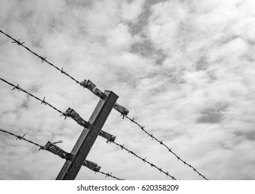 High level barbed wire fence seen against a calm sky, with the aim of preventing admittance to this sensitive area.