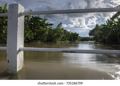 high level of water over the small bridge,Flood over agriculture Area,Countryside.