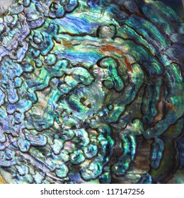 High magnification macro of blue abalone pearl shell.