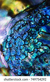 High magnification macro of blue abalone pearl shell with vivid iridescent layers. Shallow depth of field.