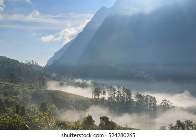 High mountain and fog in the morning. North of Thailand