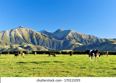 High mountain in new zealand
