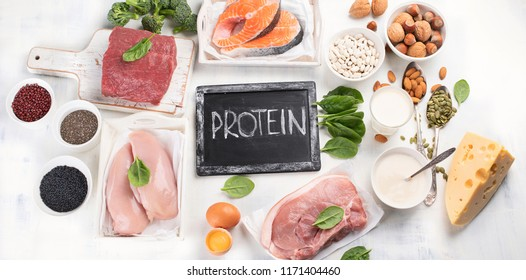High protein foods. Panorama. Flat lay. Healthy eating concept