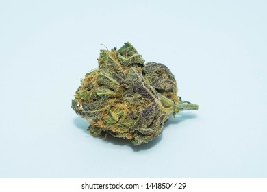 High quality image of GMO Cookies bud