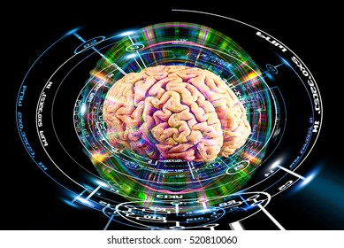 High research brain opportunities.science