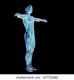 High Resolution Concept Or Conceptual Human Man 3D Anatomy Body With Muscle Isolated On Black