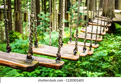 high ropes course at a forest