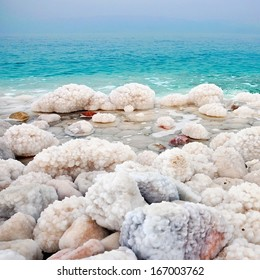 High saturation Dead sea view with salted rocks