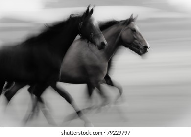 At high speed running horse in a farmland