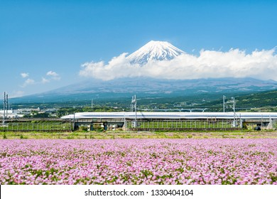 High speed train passing by Mount Fuji in spring, Japan