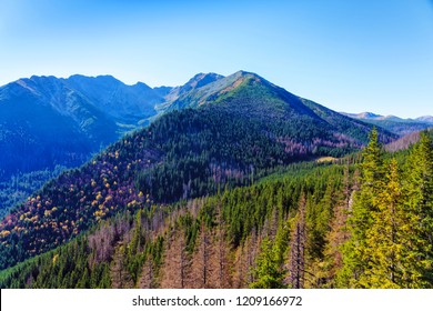 The High Tatras Mountains (Vysoké Tatry, Tatry Wysokie, Magas-Tátra), are a mountain range along the border of Slovakia in the Prešov Region, and southern Poland in the Lesser Poland Voivodeship.