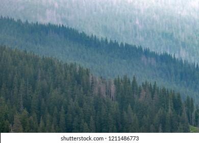 The High Tatras Mountains (Vysoké Tatry, Tatry Wysokie, Magas-Tátra)