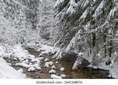 High Tatras river in winter