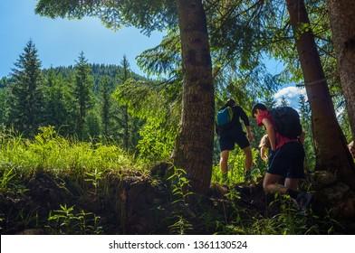 High Tatras, Slovakia - June 16, 2016: Young hikers walking under trees in national park Western Tatras in Slovakia