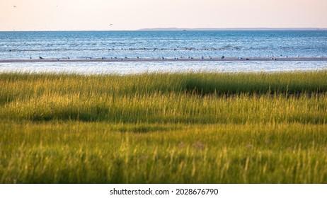 High tide at dawn on Skaket Beach, Orleans, Massachusetts