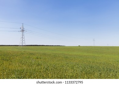 High voltage line among field of grain