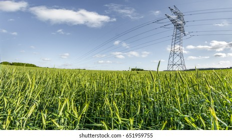 High voltage pole at wheat field countryside at day time - Large view on the powerlines on the field
