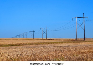 high voltage power line crosses large expanse of prairie grain field under a clear blue sky