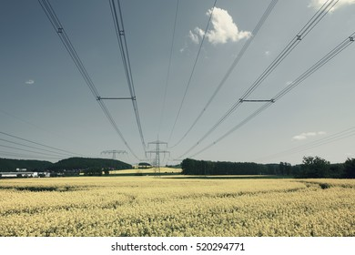 High voltage power lines over rapeseed field
