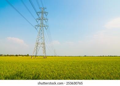High voltage through the rice fields in Thailand.