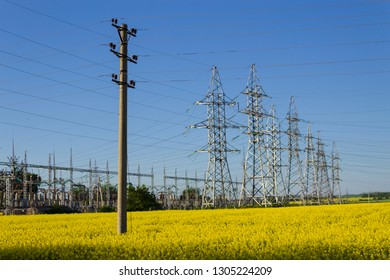 High voltage wires in a rapeseed field. Bioenergy concept