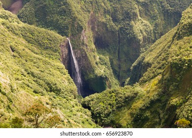 A high waterfall in the middle of the jungle of Reunion Island - Trou de Fer