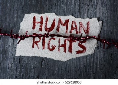 high-angle shot of a barbed wire and a piece of paper with the text human rights handwritten in it on a rustic wooden surface