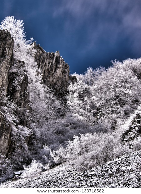 High-dynamic-range  image showing a mountain landscape white trees and rocks in contrast with a very deep blue sky