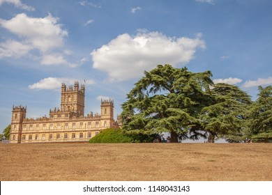 Highere Castle with big Libanon Cedar tree at Summer Famous as Downton Abbey