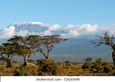 The highest mountain of African Continent, Mount Kilimanjaro seen from the plains of Amboseli. I would call it: The Magic of Kili