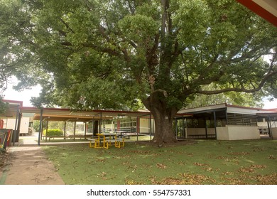 Highfields, Australia - January 4th, 2017: Highfields State School. Under the shade of large Camphor Laurel trees, Highfields State School stands empty for the summer holidays.