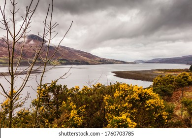 "Highland, Scotland. Loch Broom near Ardcharnich. It is a sea loch on the west coast of Scotland. Its name in Gaelic is Loch Bhraoin, meaning ""loch of rain showers""."