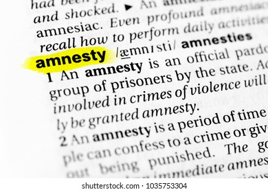 """Highlighted English word """"amnesty"""" and its definition in the dictionary."""