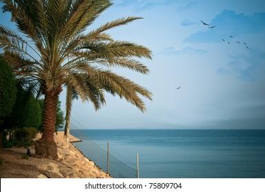 A high-resolution image of a beautiful seascape found at al-Khobar, Saudi Arabia.