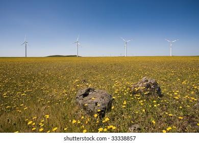 High-tech windmills at the plateau of Paul da Serra, Madeira